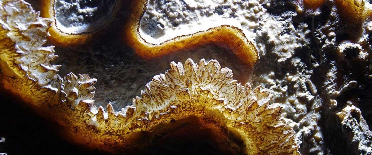 Crystal Caverns ceiling rimstone